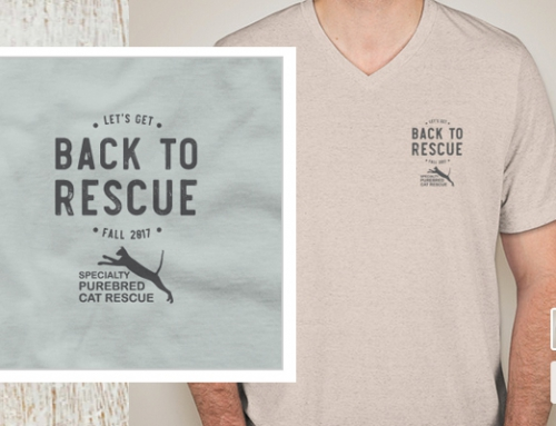 Back to Rescue